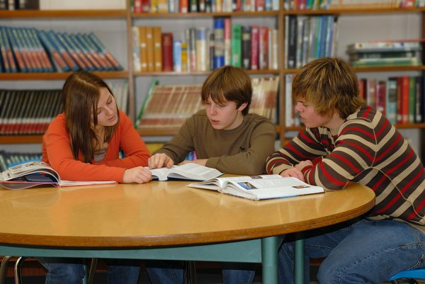 Online advocacy curriculum now available for special education